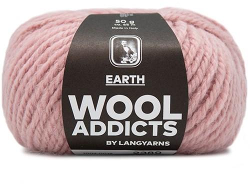 Lang Yarns Wooladdicts Earth 019