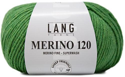 Lang Yarns Merino 120 317 Green Mélange