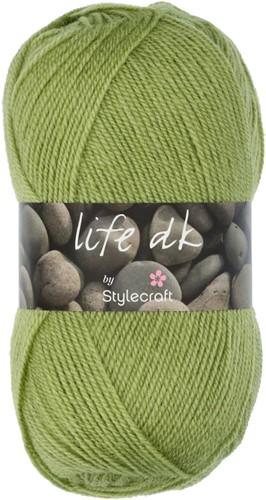 Stylecraft Life DK 2311 Fern