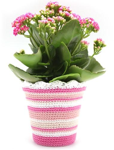 Patroon gehaakte bloempot