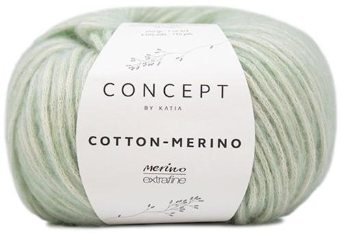 Cotton-Merino Visgraatsteek Trui Breipakket 1 Green water 38/40